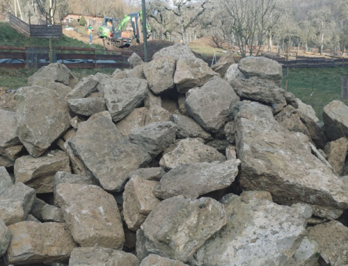 Baubeginn der Trockensteinmauer